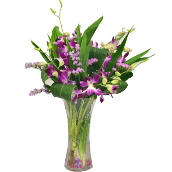 Orchids arrangement in Vase