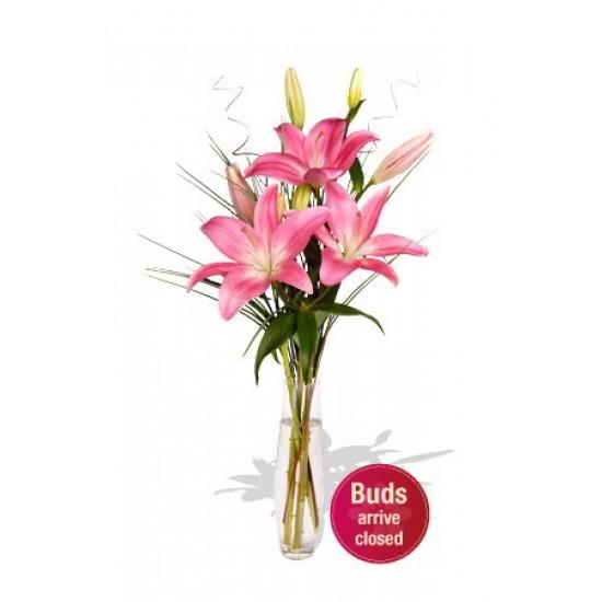 2 Asiatic Lily Vase Bouquet